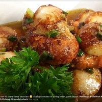 Scallops in garlic
