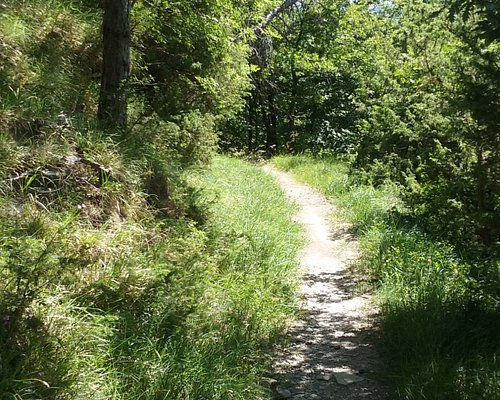 The trail is mostly in the shade
