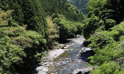 素晴らしい渓流です