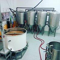 Brew pot and Fegmenters