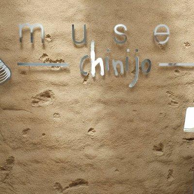 Pared del museo