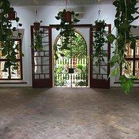 Installation Akousmaflore dans l'ancien bureau des consuls généraux