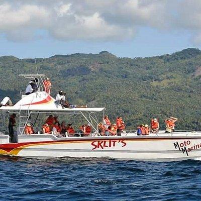 Catamaran in samana