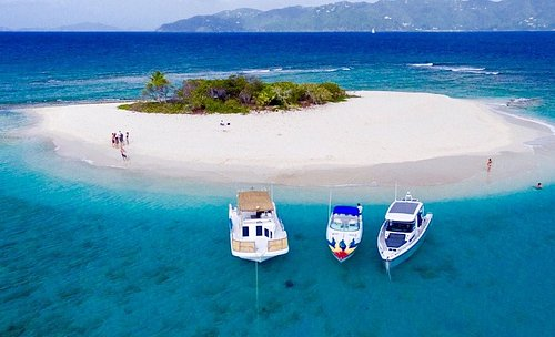 Foxy's Charters & Water Taxi has 3 boats in its fleet.  Servicing the USVI & BVI