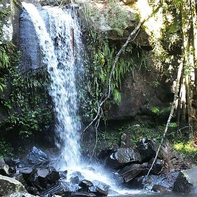 国立公園の終着点は自然の滝