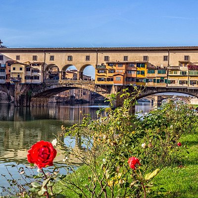 Vision of the Ponte Vecchio from the gardens of the Rowing Club!
