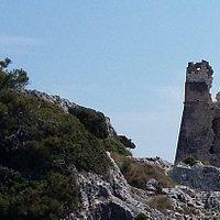 la torre e l'ambiente