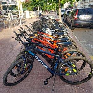 ECODRIVE    Alquiler y reparacion de bicicletas