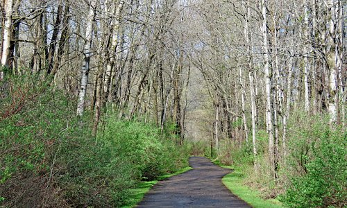 Allegheny River Valley Trail in early spring