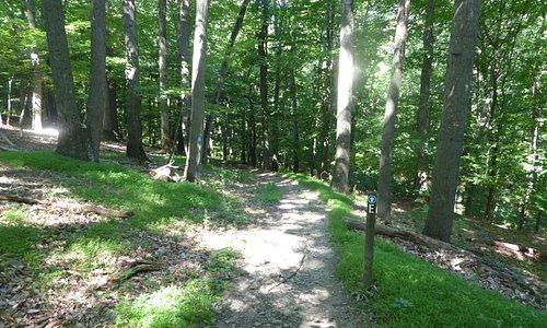 Book Hills Trail