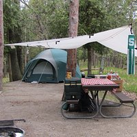 Typical campsite in D.H. Day Campground