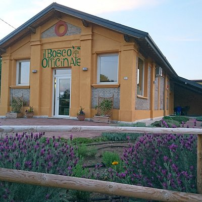 Il Bosco Officinale