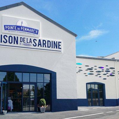 Venez découvrir l'hommage rendu par l'artiste Yann Kersalé à travers ces sardines éblouissantes