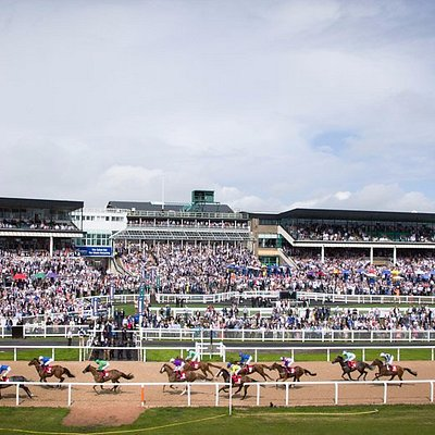 Northumberland Plate Day 2016
