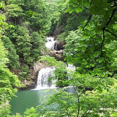 新緑の中、豪快に落ちる滝水