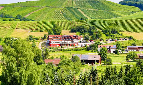 Unser Haus befindet sich inmitten der idyllischen Weinberge.