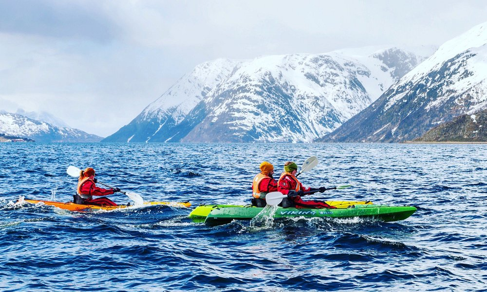 EXPLORE THE WILDFJORDS AND THE GLACIER! The Øksfjordjøkul glacier is stunning and the surroundin