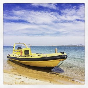 Hop On Hop Off Islands your best option to explore the Ria Formosa Natural Park in faro