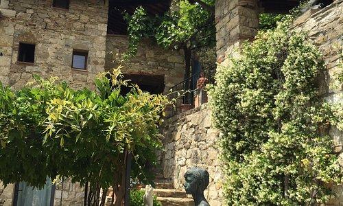 Winery borgo