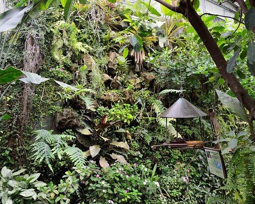 Naturospace