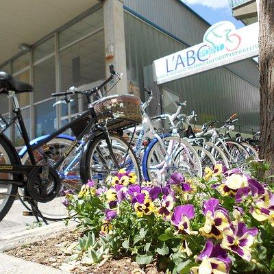 L'ingresso e le biciclette