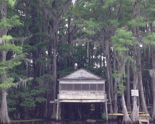 Big Cypress Boat Tour