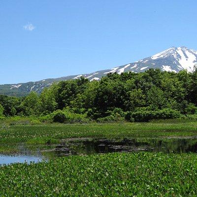 残雪の鳥海山と池塘