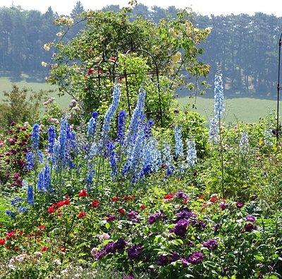 mooie botanische tuin, gratis entree, groot park waarvje ook heerlijk kunt relaxen, mooie liggin