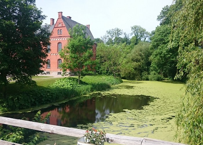 Danmarks Naturfond, Skovsgaard