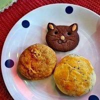 """""""Cat Cookies"""" sind für Menschen in Form von Katzen!"""