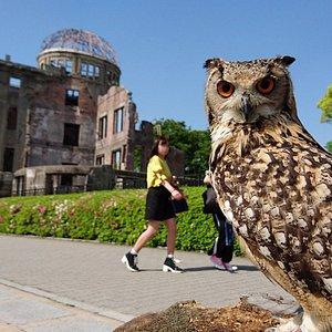 Near the Atomic Bomb Dome.