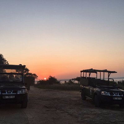 Guided game drives in the Kruger National Park!