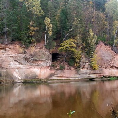 the easiest way to see the cliffs and the cave are from the other side of Gauja river