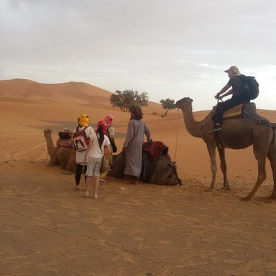 Getting ready for the camel ride