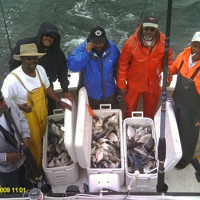 Typical Bottom fishing trip, Scup and Sea Bass