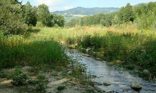 Lungho il corso del Tidone