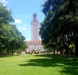 Tower & lawn at UT