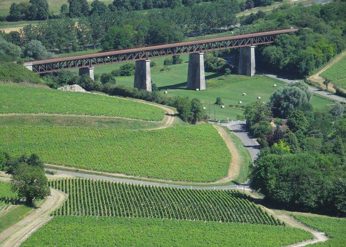 les vignes sancerroises