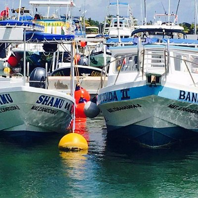 """Our two boats """"Shamu"""" and """"Bandida II"""" newly renovated and together again!"""