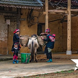 Dao People in Ha Giang