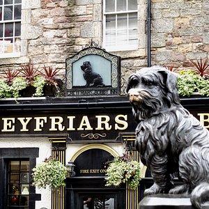 The Skye Terrier himself
