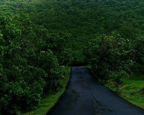 Gautala Autramghat Sanctuary