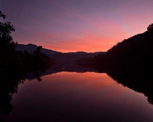 Daintree Rainforest River Cruise