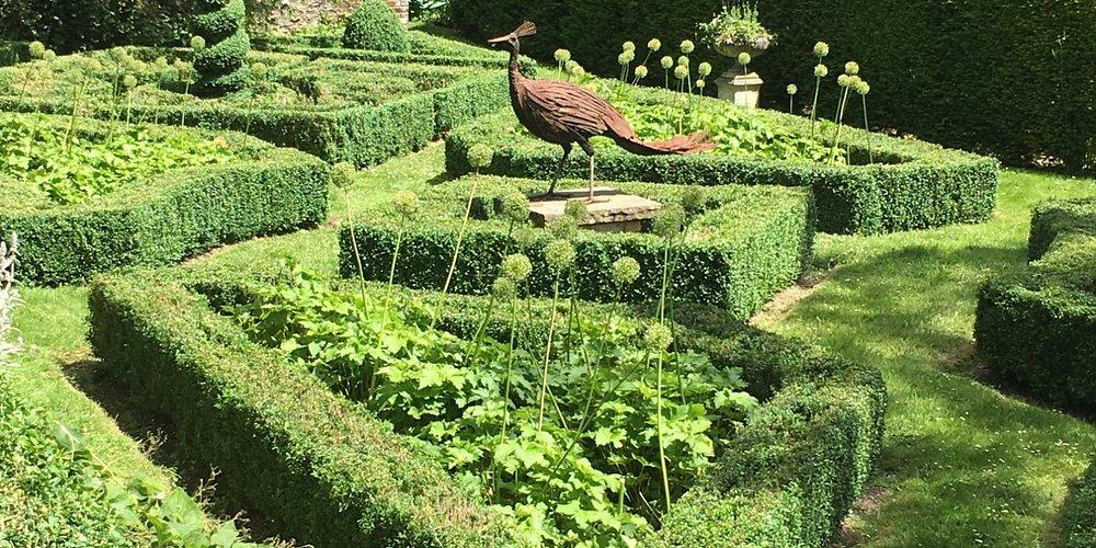 the peacock garden
