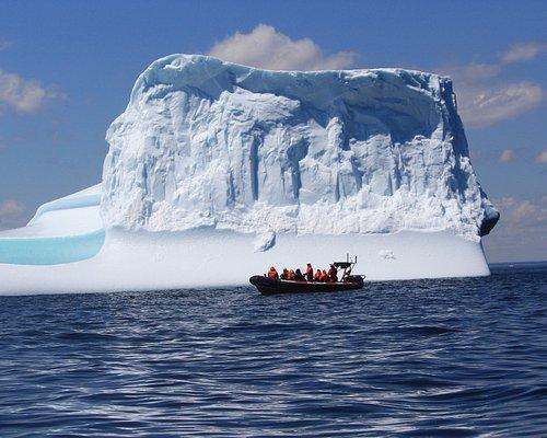 Icebergs off Bonavista