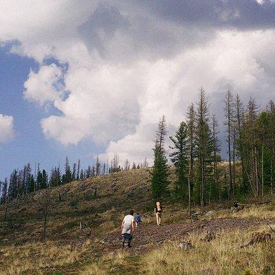 подъем на гору (недалеко от Улаганского перевала)