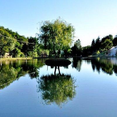 lago  storioni e carpe