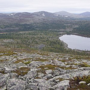 A view from Pyhä-Nattanen Fell