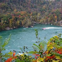 Fall view from top of trail, down into the rapids near Devil's Hole; jetboat tour en route.