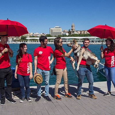 The awesome team of Málaga Adventures give the best tours in the city.